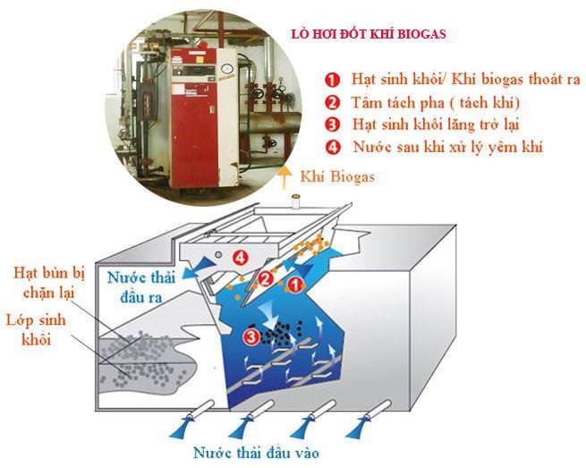 POLYCO GROUP giới thiệu Hệ thống xử lý nước thải nhà máy bia 3