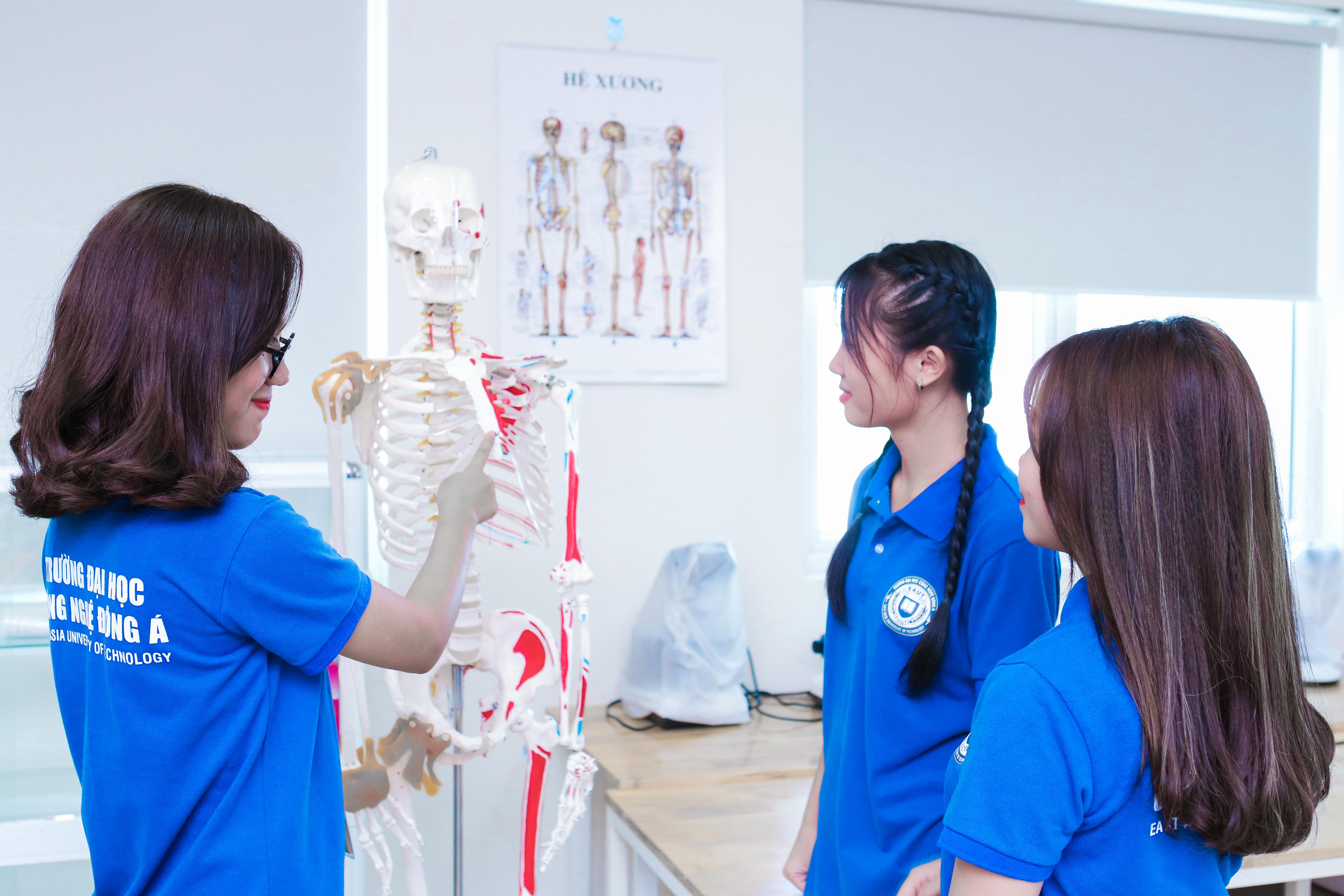 Sinh viên ngành dược học sẽ được học những gì?